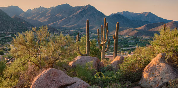 Desert Escapes of California & Arizona  Tours and couples holiday experience